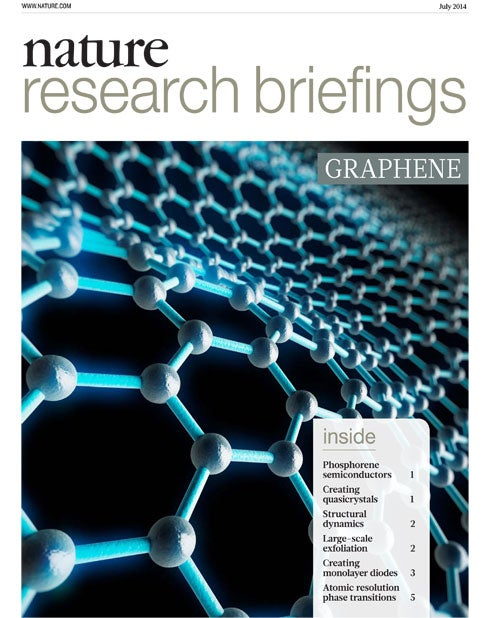 Nature Research Briefings: Graphene