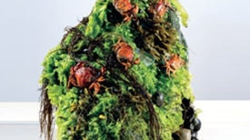 Invasive Species Menu of a World-Class Chef