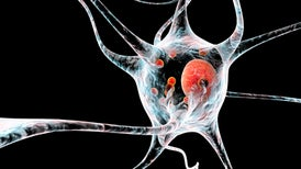 Parkinson's Drugs Aimed at Rare Gene Mutation Show Promise for Other Sufferers, Too