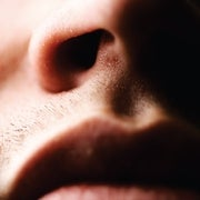 Chemists Discover Why the Nose Is Hypersensitive to Sulfur Odors