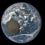 Traces of Oxygen on the Moon Come from Earth's Plants