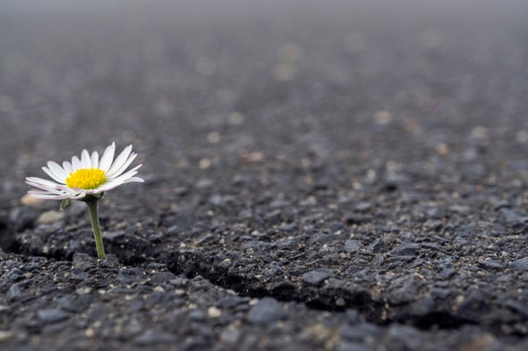 6 Ways to Build Your Resilience