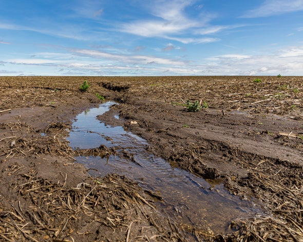 How Dirt Could Help Save the Planet