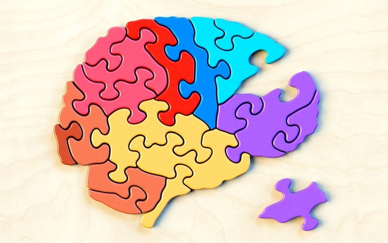 Cracking the Brain's Enigma Code
