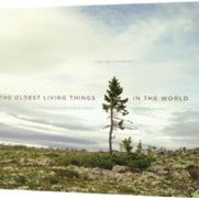 Book Review: <em>The Oldest Living Things in the World</em>