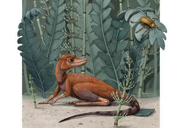 'Tiny Bug Slayer' Dinosaur Relative Would Fit in the Palm of a Hand