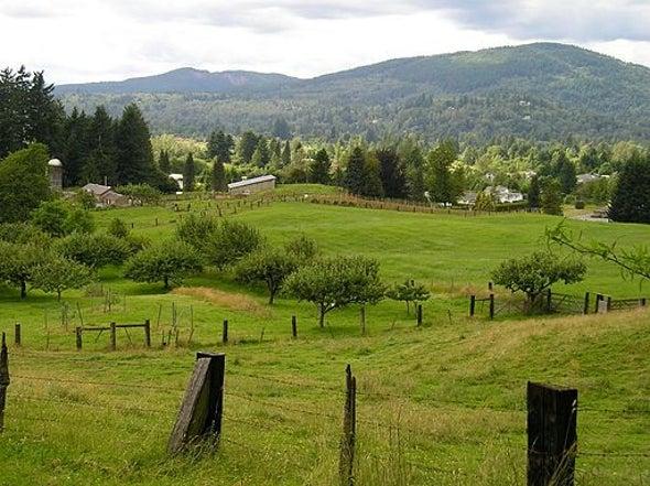 Locals Versus Corporate Carbon Offsets in British Columbia