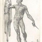 1556: <i>Anatomia del corpo humano</i>, by Juan Valverde de Amusco