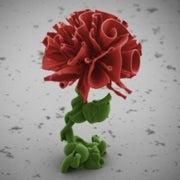 Very Fine Art: 6 Stunningly Beautiful Nanoscale Sculptures [Slide Show]