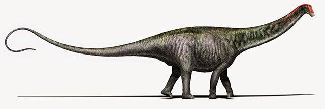 The Brontosaurus Is Back - Scientific American