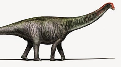 The <i>Brontosaurus</i> Is Back