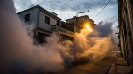 Mosquito Guns and Heavy Fines: How Cuba Kept Zika at Bay for So Long