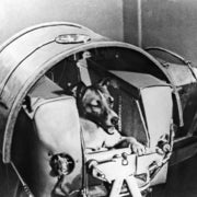 Remembering Laika the Dog's Trip to Space, 57 Years Later