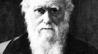 """Darwin Speaks: """"How faithlessness stalked me"""""""