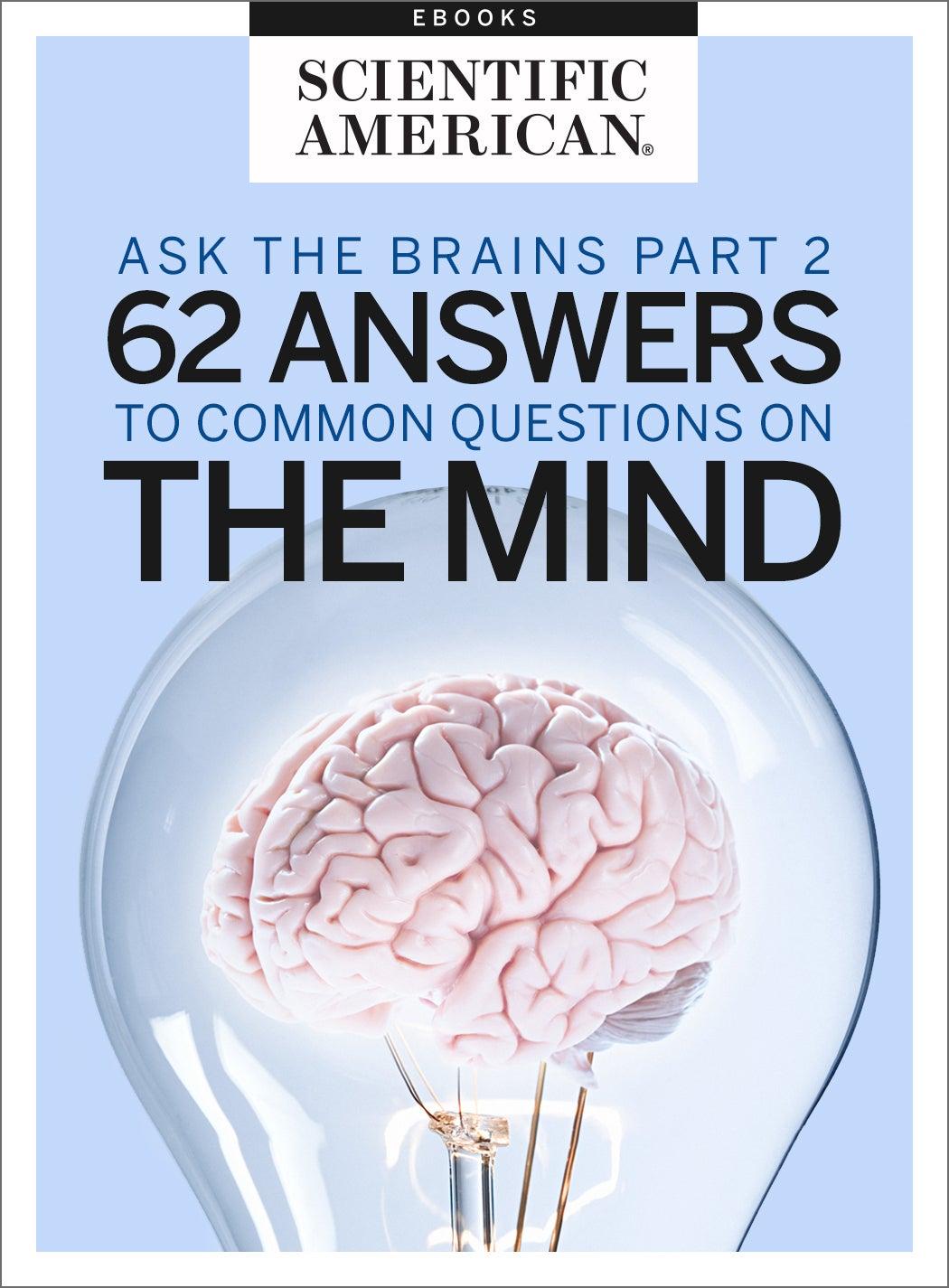 Brain Diagram Answers 175traoberheit