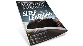 Learning While Sleeping; the Challenges of Inequality