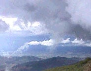 Turbulence within Clouds Triggers Rain