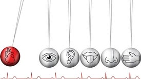 How Your Heartbeat May Trick Your Senses