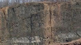 Triassic Extinction Tied to Massive Lava Spills