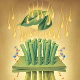 Reinventing the Leaf: Artificial Photosynthesis to Create Clean Fuel