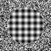 The Ouchi Illusion