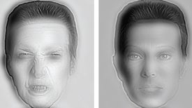 The Brain's Face Recognition System Is Easy to Fool