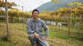 Fukushima Residents Return Despite Radiation