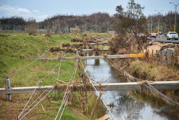 Repair or Renovate? Puerto Rico Faces Stark Power Grid Options