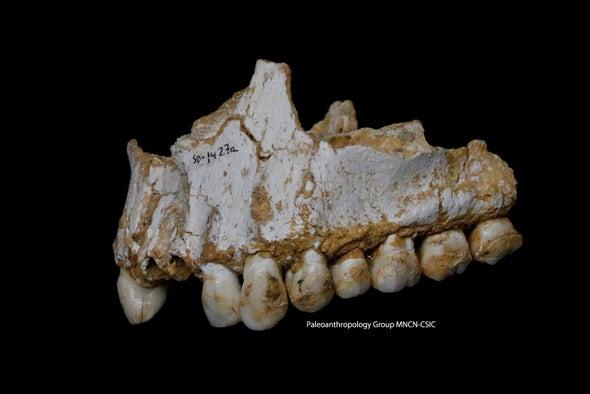 Teeth Hint at a Friendlier Neandertal