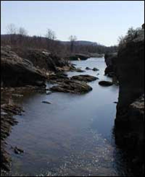 Old Rivers More Active in Youth