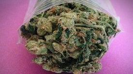 Marijuana May Boost, Rather Than Dull, the Elderly Brain