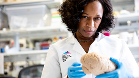 Clues to Addiction in Brains and Genes