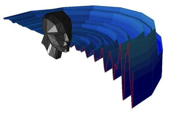 Human Echolocators Use Tricks Similar to Bats