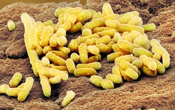 How Gut Bacteria Tell Their Hosts What to Eat