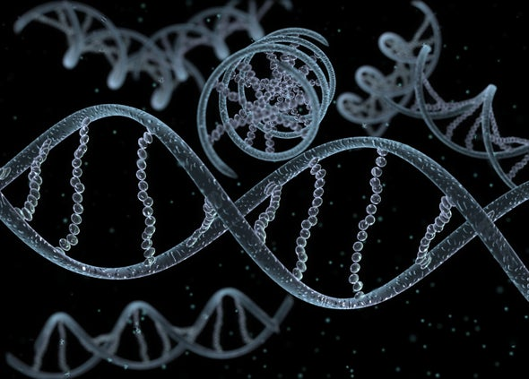 Gene-Editing Research in Human Embryos Gains Momentum