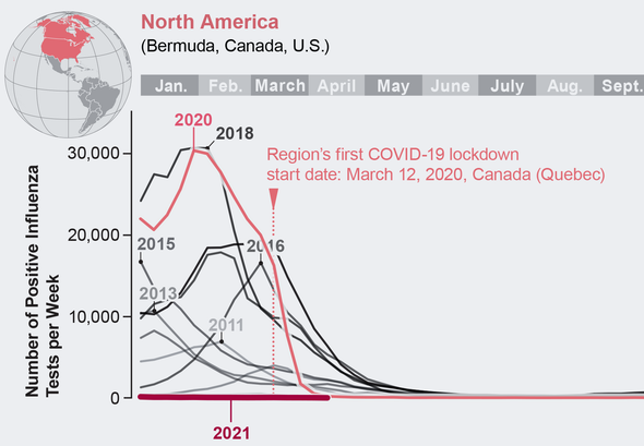 Flu Has Disappeared Worldwide during the COVID Pandemic