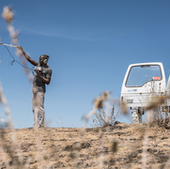 Field researcher Longida Siodi uses an antenna to find baboons, some of which wear tracking collars.