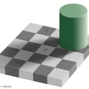 BRIGHTNESS AND COLOR ILLUSIONS