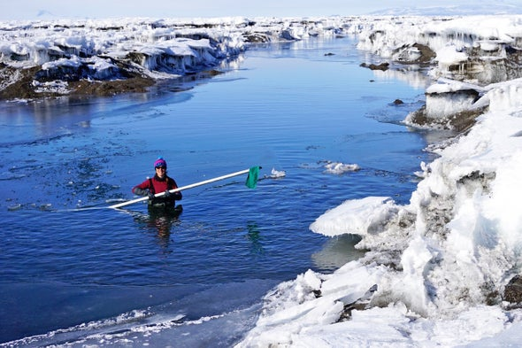 Antarctica's Ice Shelves Get a Bounce from Ephemeral Lakes