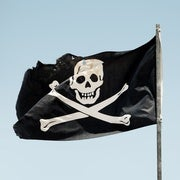 Pirates Needed Science Too
