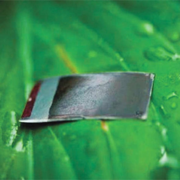 """Artificial Leaf"" Hits Development Hurdle"