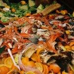 Statistically Speaking: A Wasteland of Food
