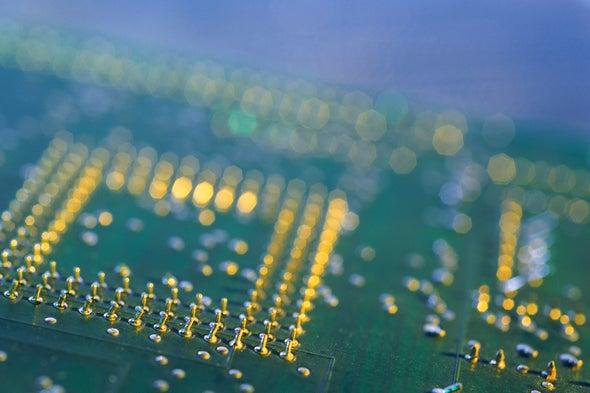 Mantis Shrimp Shells May Inspire Next-Generation Computer Chips