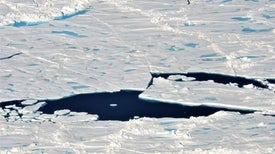 Arctic Sea Ice Is Getting Younger. Here Is Why That Is a Problem.
