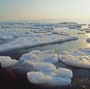 Trillions of Tiny Plastic Pieces Reside in Arctic Ice
