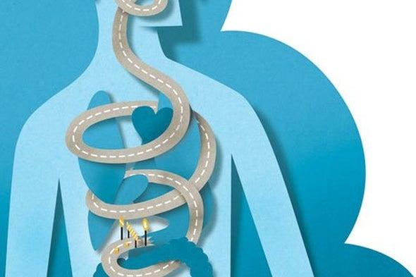 减肥手术会重新连接肠脑连接吗?是吗?