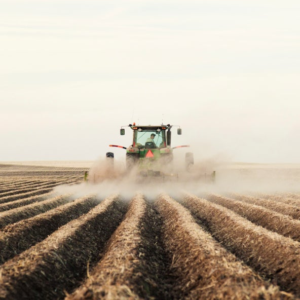 Farming Now Worse for Climate Than Clearing Forests