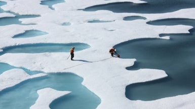 How Low Will the Arctic's Summer Sea Ice Go?