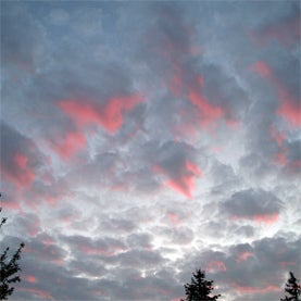 cloud, computer, network, research