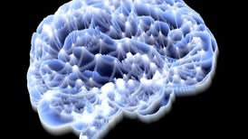 Ultrasound Could Offer Noninvasive Treatment for Parkinson's and Depression